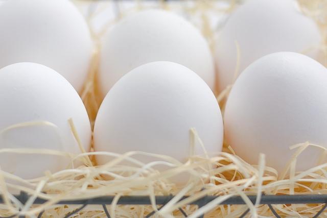 卵アレルギーの人の食事管理!子供への対策とは