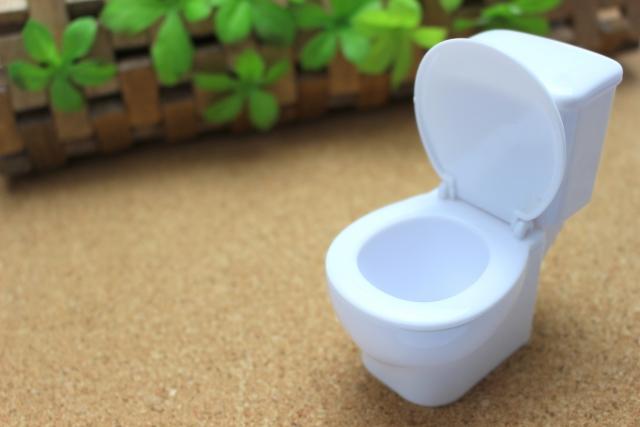 トイレの水垢はタンクの中にも潜んでいる・・・掃除方法を解説!